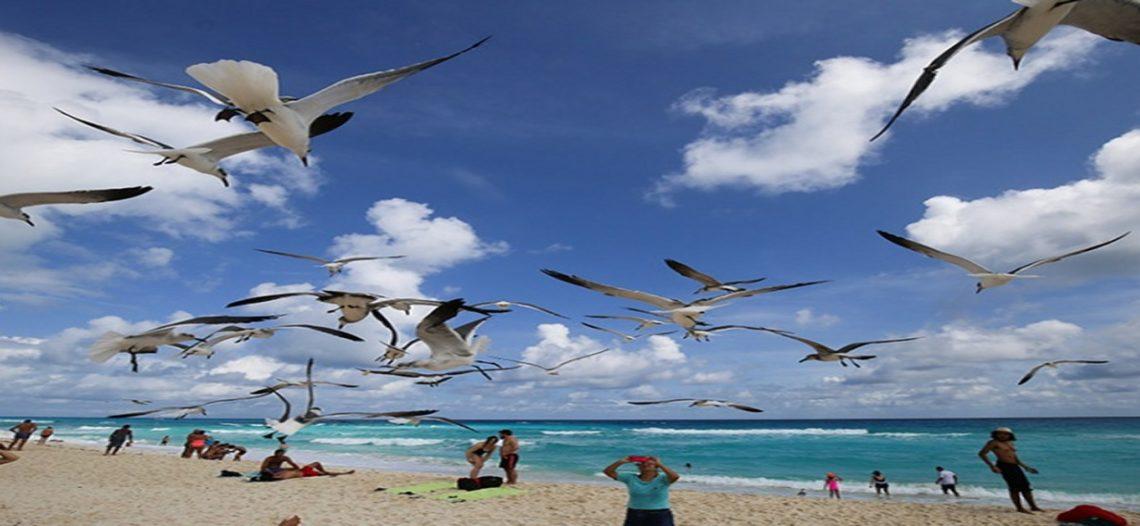 Gobierno de QRoo responde a la prohibición de EU de viajar a Playa del Carmen