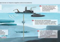 Supuesto fallo de Tribunal daría vida a proyecto de minería submarina en BCS