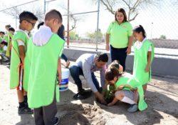 Adoptan árboles alumnos de Primaria Melchor Ocampo