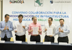 Reafirma Constellation Brands confianza en Sonora