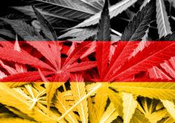Miles reclaman legalización de mariguana en Alemania