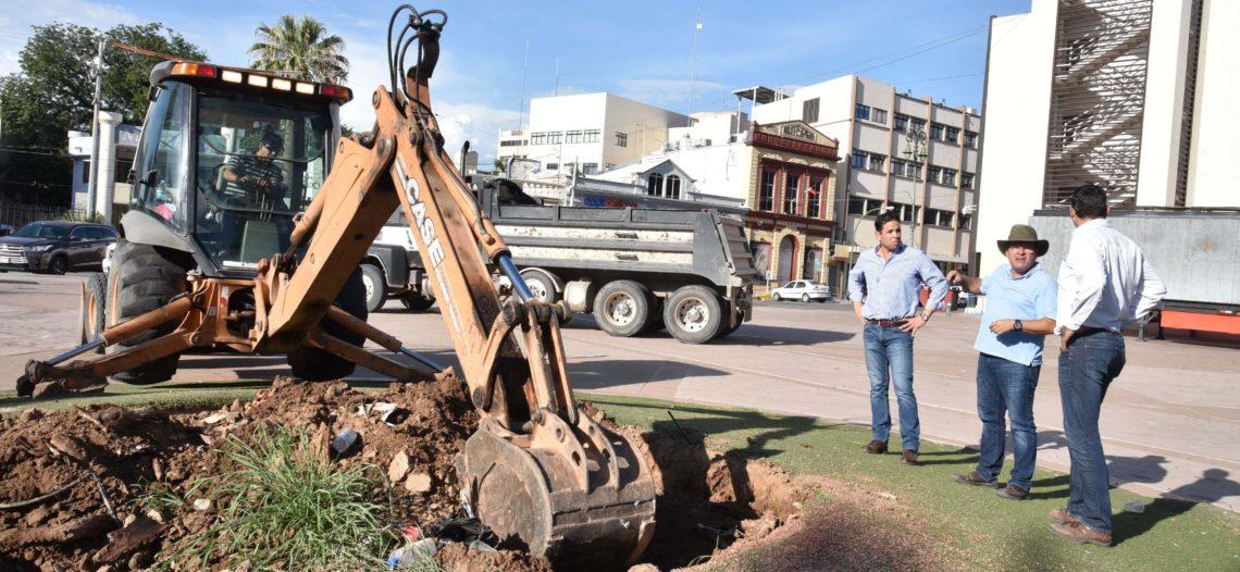 Inician trabajos para plantar árboles en la Plaza Alonso Vidal