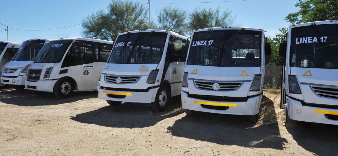 Entrarán en operación 20 unidades más del transporte