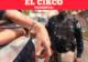 Percepción de inseguridad en Hermosillo a la baja